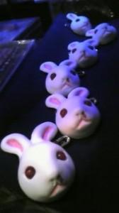 Ribambelle de lapins